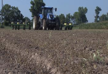 Black Farmers Field Day features agriculture opportunities