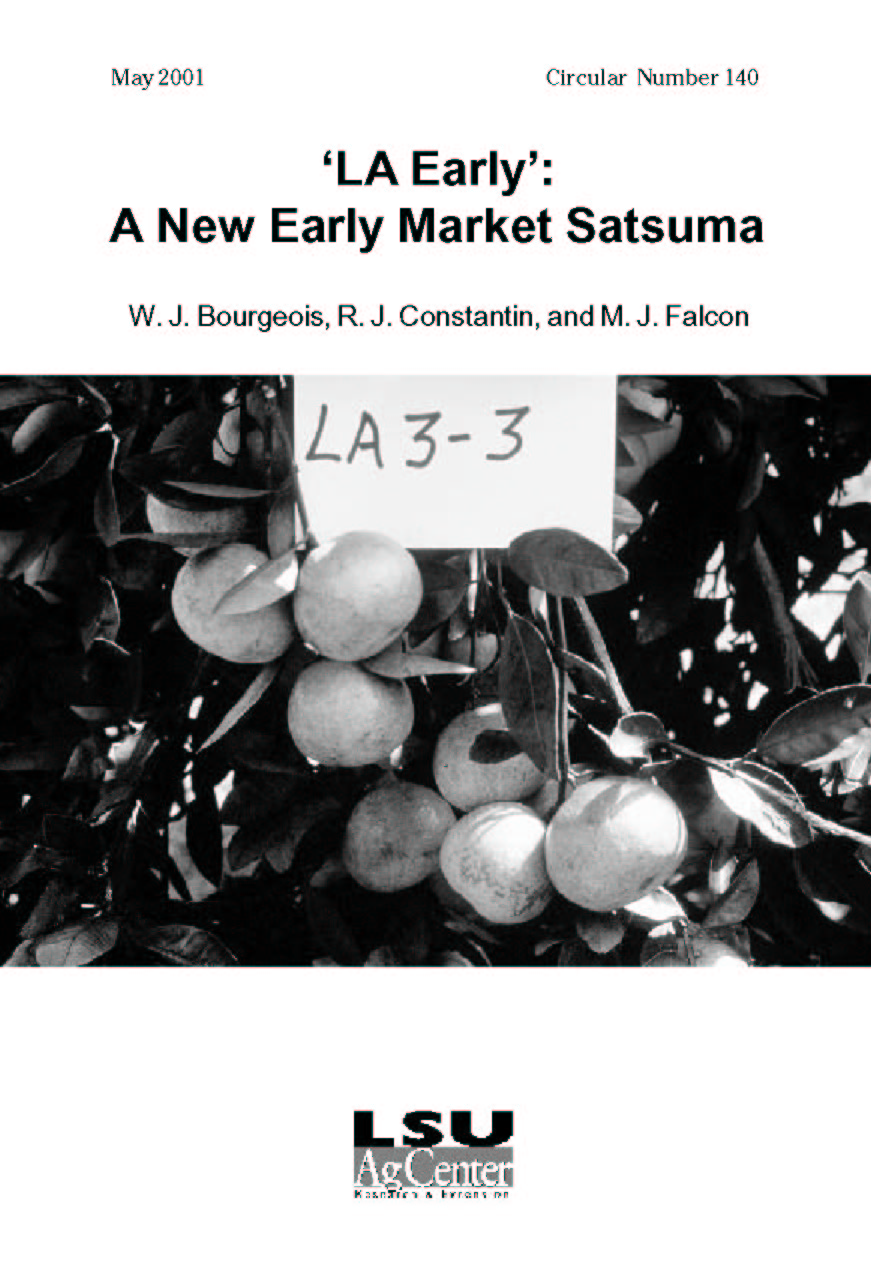Louisiana Early: A New Early Market Satsuma (May 2001)