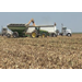 Corn yields slightly lower because of wet growing season