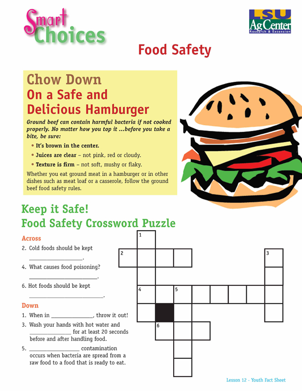 Smart Choices:  Chow Down on a Safe and Delicious Hamburger