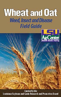 Wheat and Oat Weed Insect and Disease Field Guide