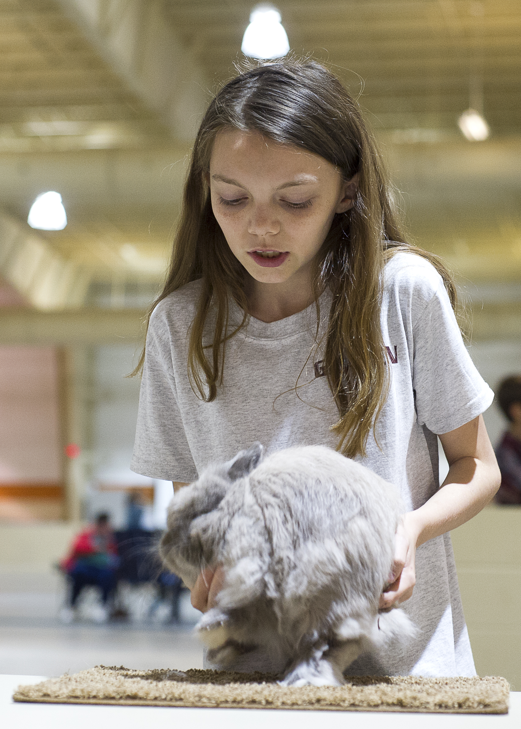 LSU AgCenter rabbit show winners announced