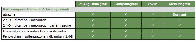 Table that shows the postemergence herbicide active ingredients for bermudagrass, centipedgrass, st. augustine grass, and zoysia.