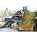 Fumaric Acid Production from Bagasse