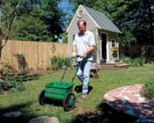 Time to Fertilize Your Lawn