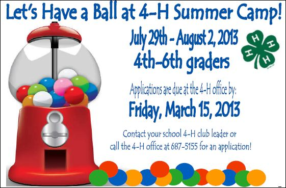 Let's have a Ball at 4-H Summer Camp