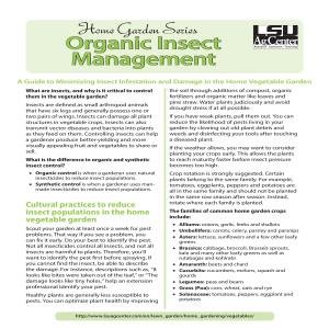Organic Insect Management