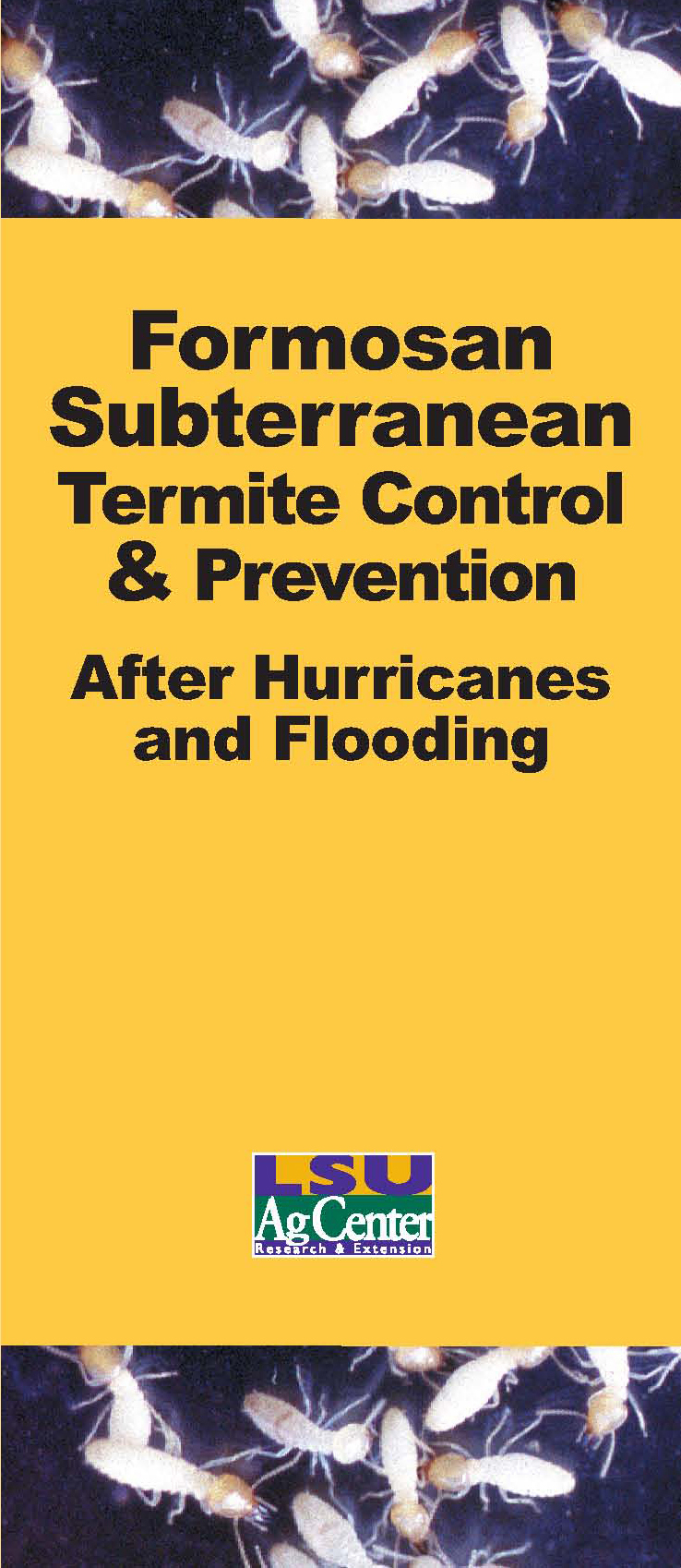 Formosan Subterranean Termite Control & Prevention After Hurricanes and Flooding