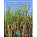 Sugarcane Production Handbook