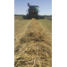 Harvest weed seed control study expands