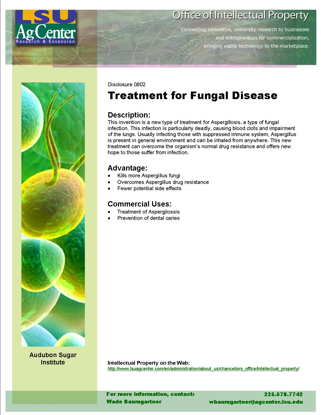 Sugar-Based Treatment for Fungal Disease
