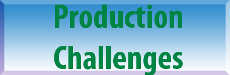 Production Challenges Button