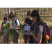 Students study diverse habitats in botany course
