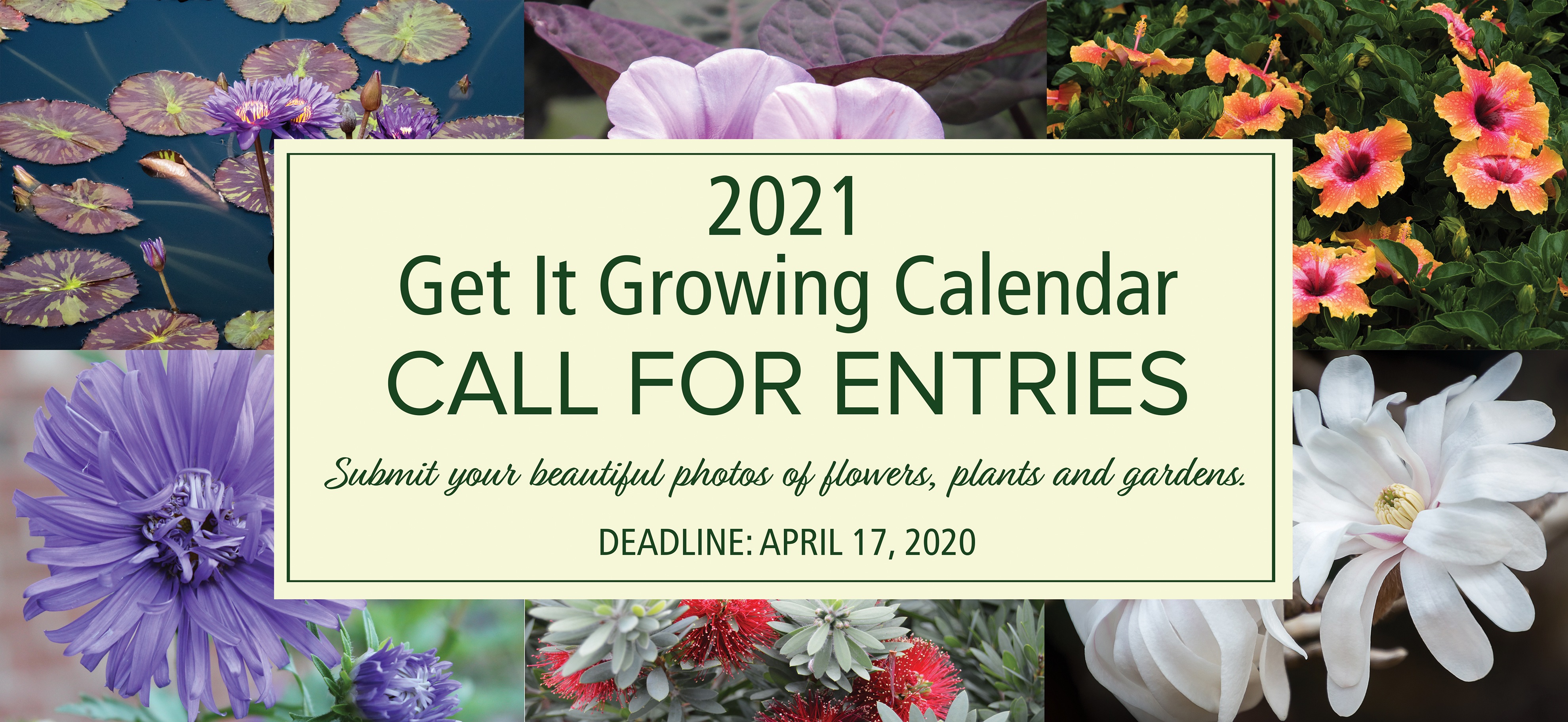 2021 Get It Growing Calendar Call for Entries. Submit your beautiful photos of flowers, plants and gardens. Deadline: April 17, 2020