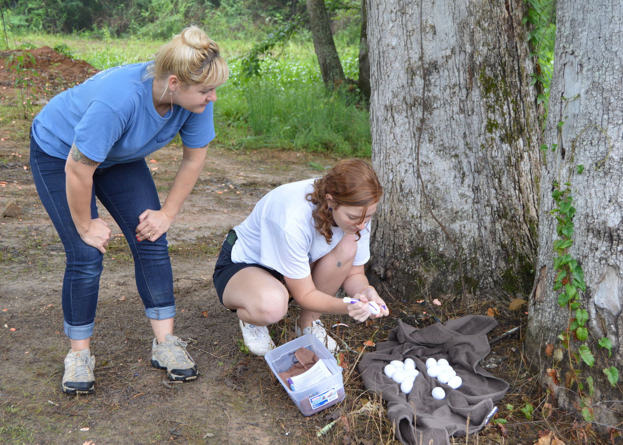 4-H summer camp offers open enrollment