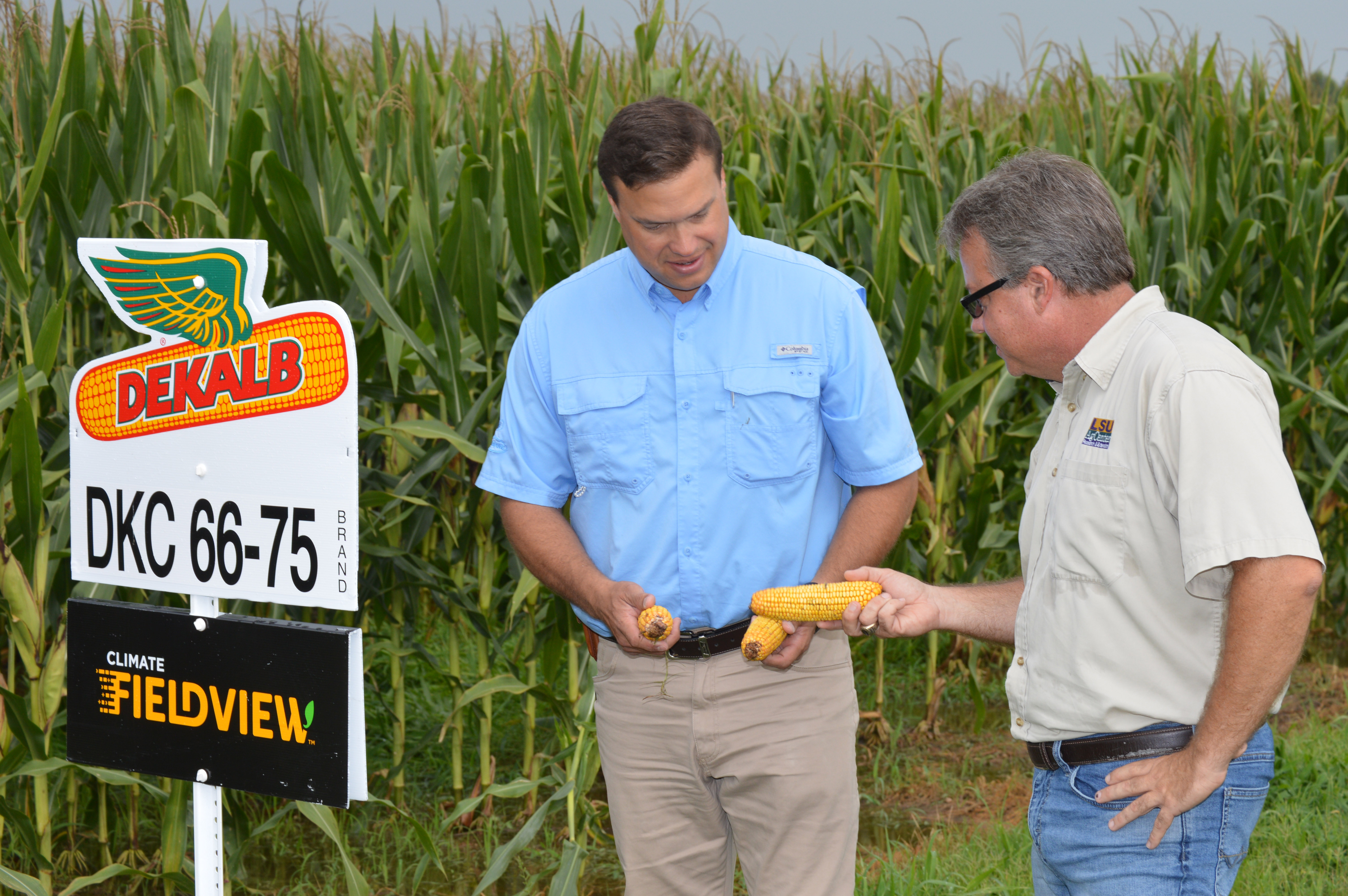 AgCenter research station hosts industry-sponsored tour