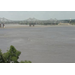Mississippi River flooding cropland in Louisiana