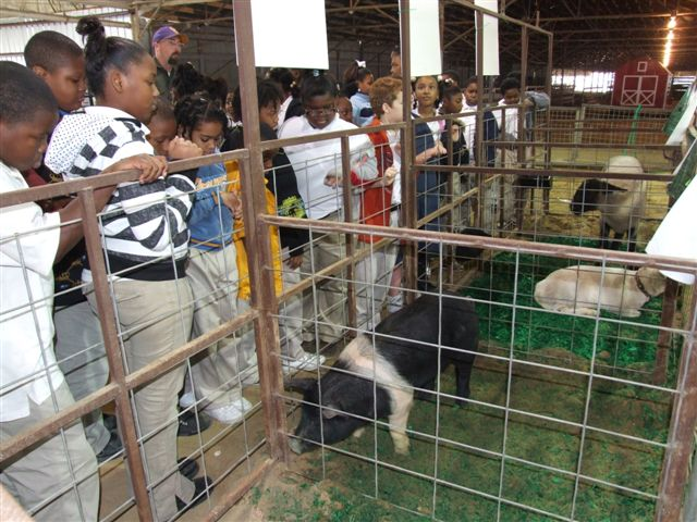 LSU AgCenter Ag Adventures attracts 1,100 students