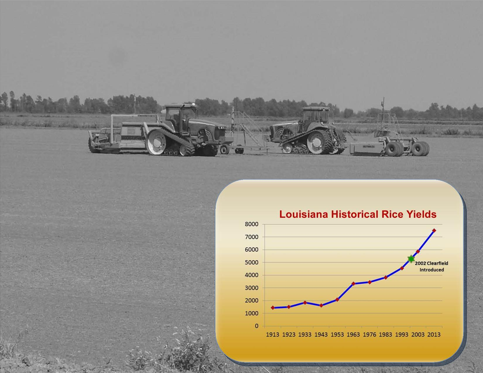 Changes in Louisiana Rice Production – Part 1