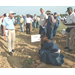 New varieties highlight LSU AgCenter sweet potato field day