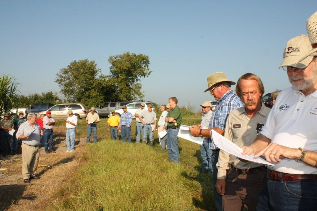 2011 Beaumont Site Visit: Mexican Rice Borer and Sugarcane Borer Research