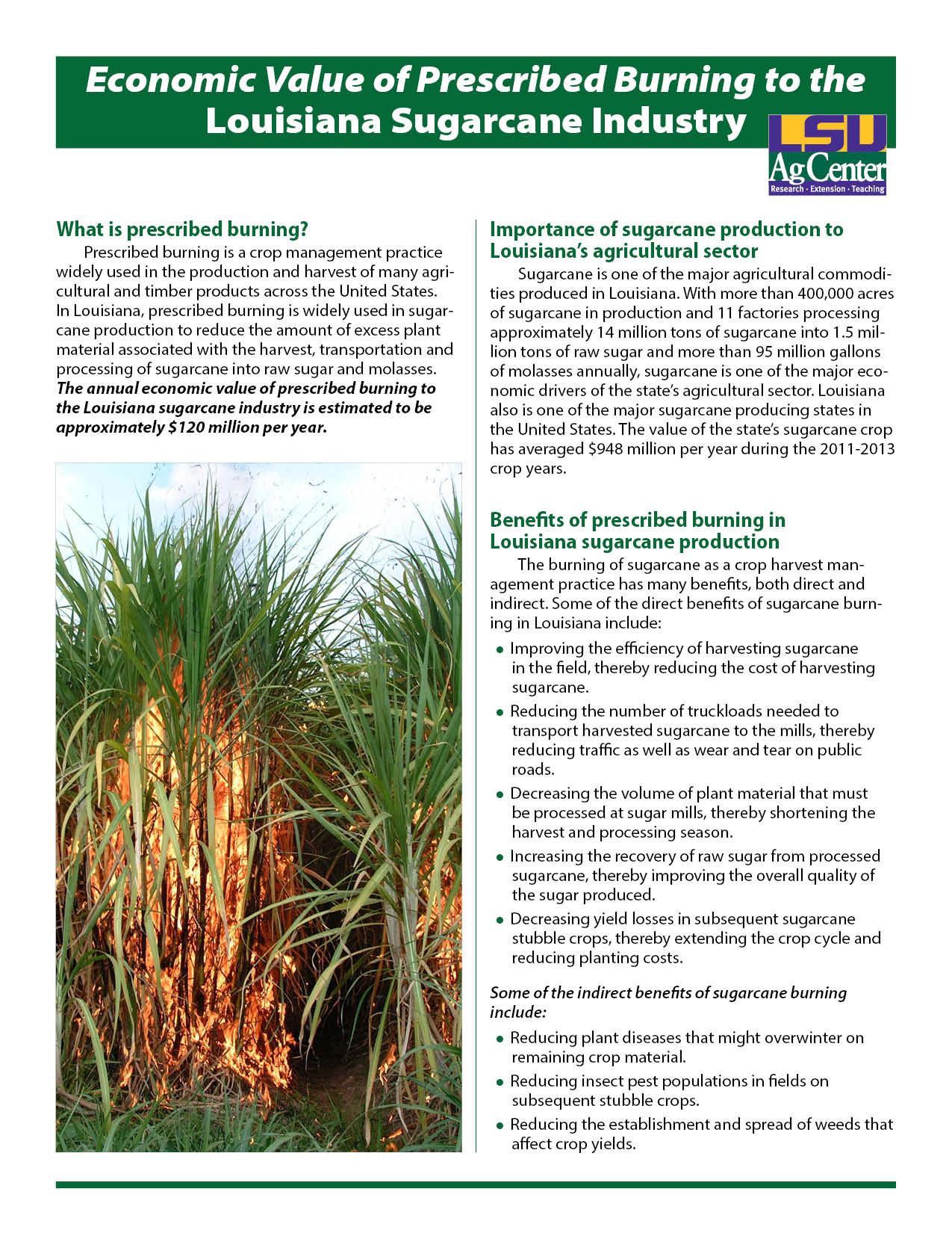 Economic Value of Prescribed Burning to the Louisiana Sugarcane Industry