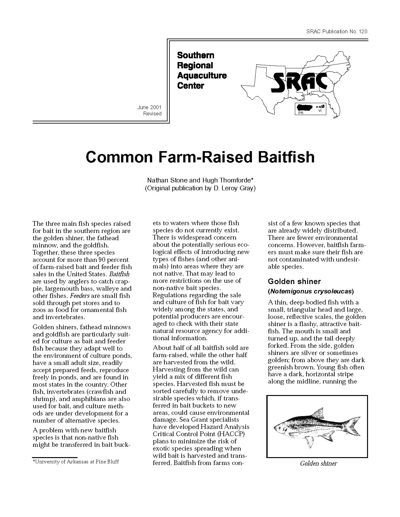 Common Farm-Raised Baitfish