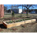 Building a Raised Bed for Vegetables