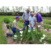 LSU AgCenter Scientists Testing Weed Control For Louisiana Iris Growers