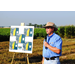 Crop pests addressed at LSU AgCenter field day