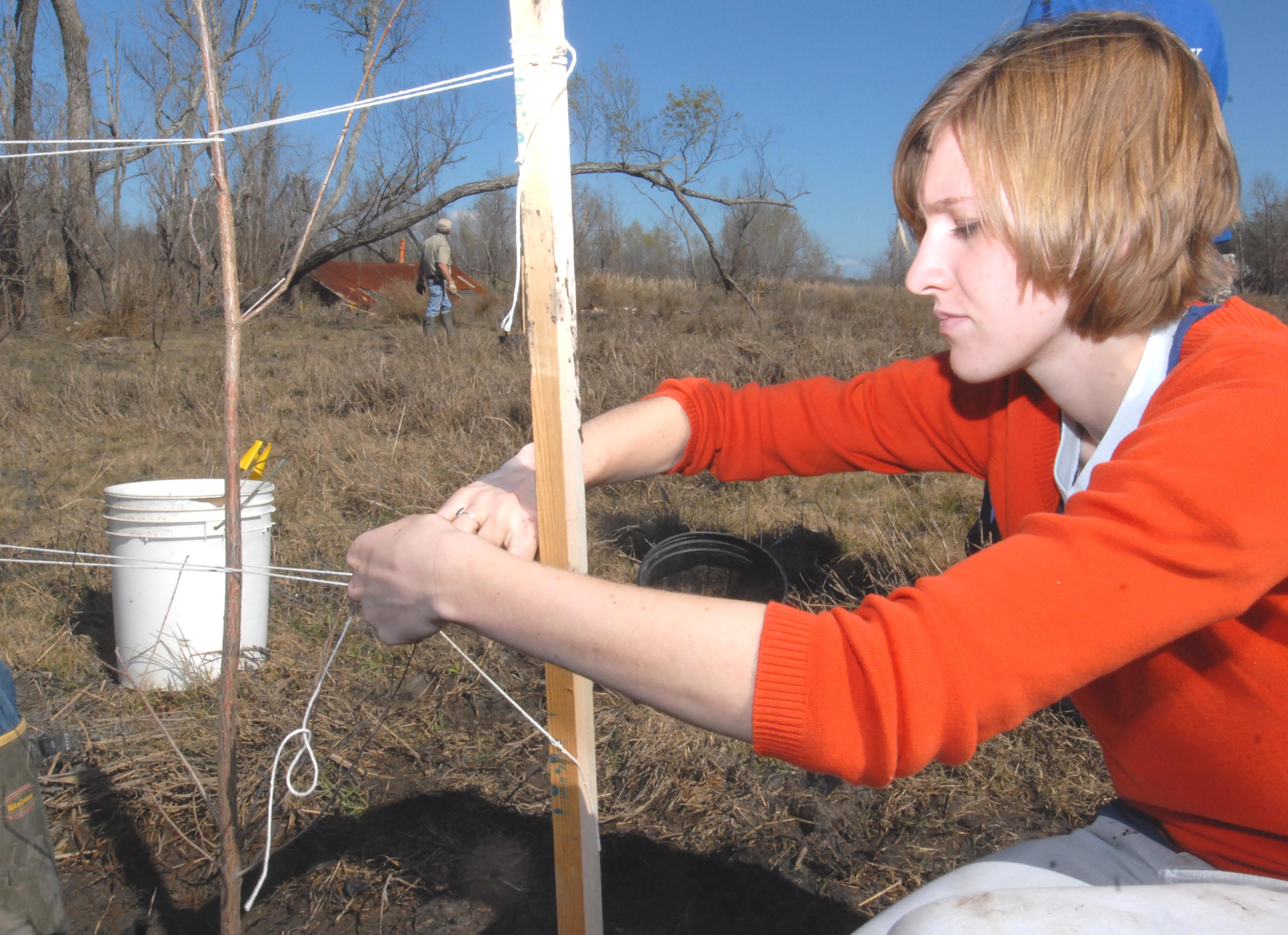 Students plant trees for coastal protection