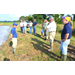 Farmers hear status of current rice crop