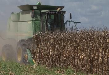 Value of La. agriculture sets record in 2012