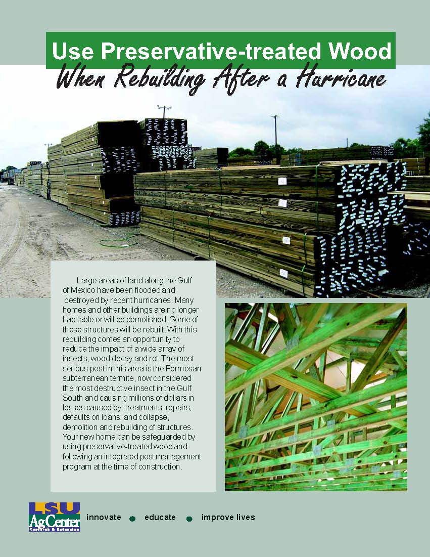 Use Preservative-treated Wood When Rebuilding After a Hurricane