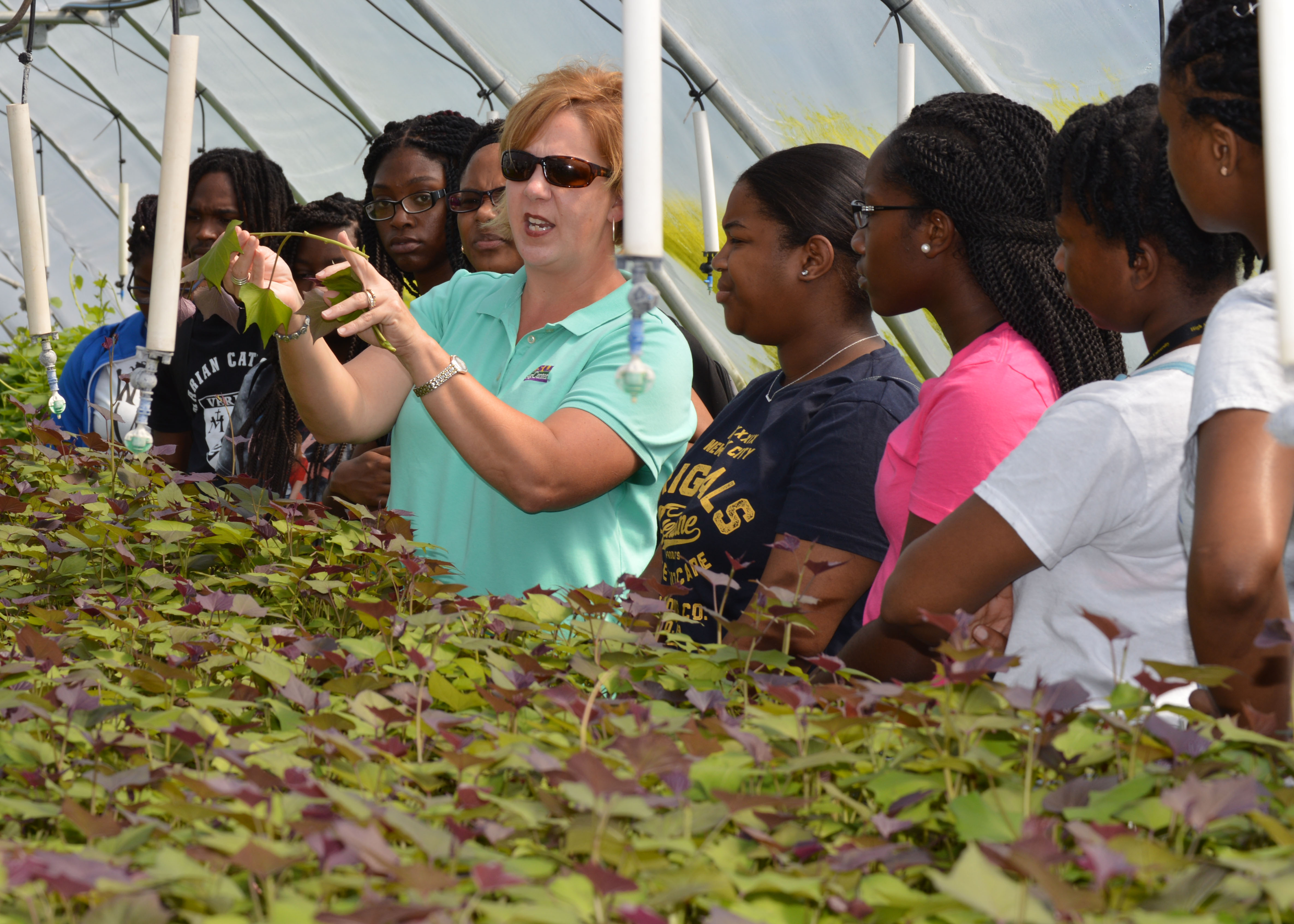 AgCenter research station hosts Grambling summer program visitors