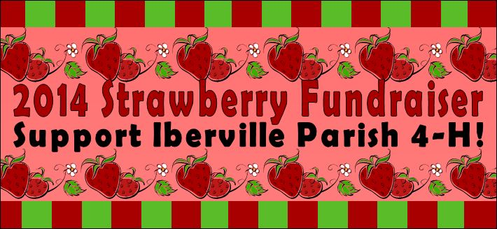 Strawberry Fundraiser