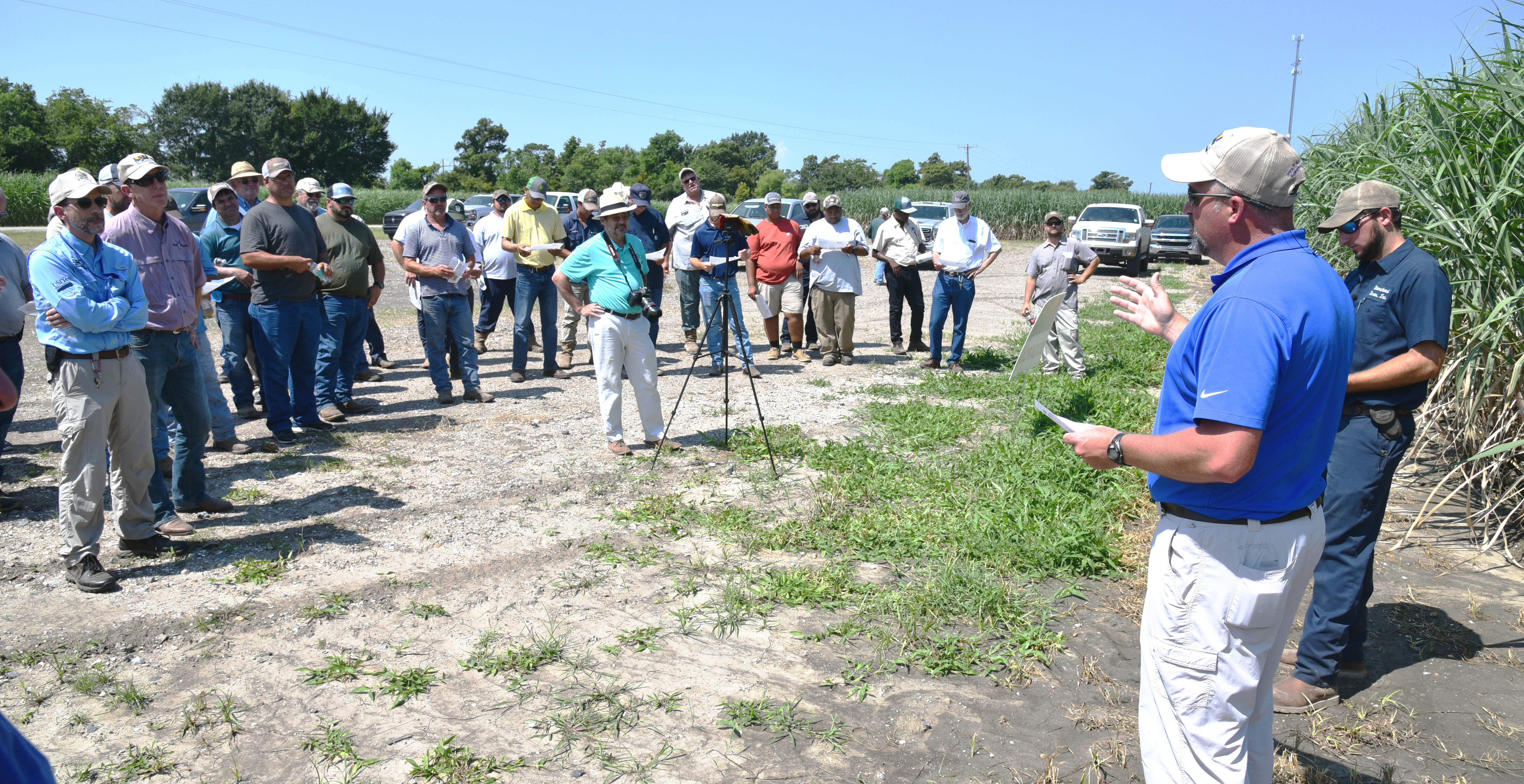 Cover crops featured at sugarcane field day
