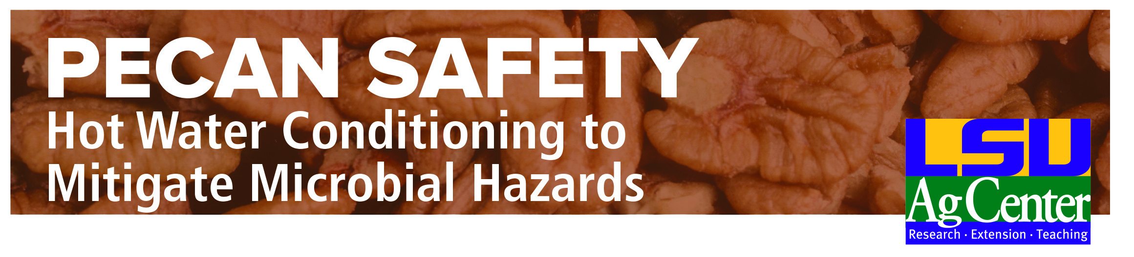 3642 Pecan Safety header_web.jpg thumbnail
