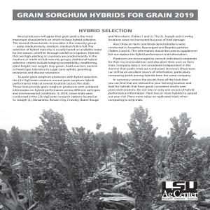 Grain Sorghum Hybrids for Grain 2019
