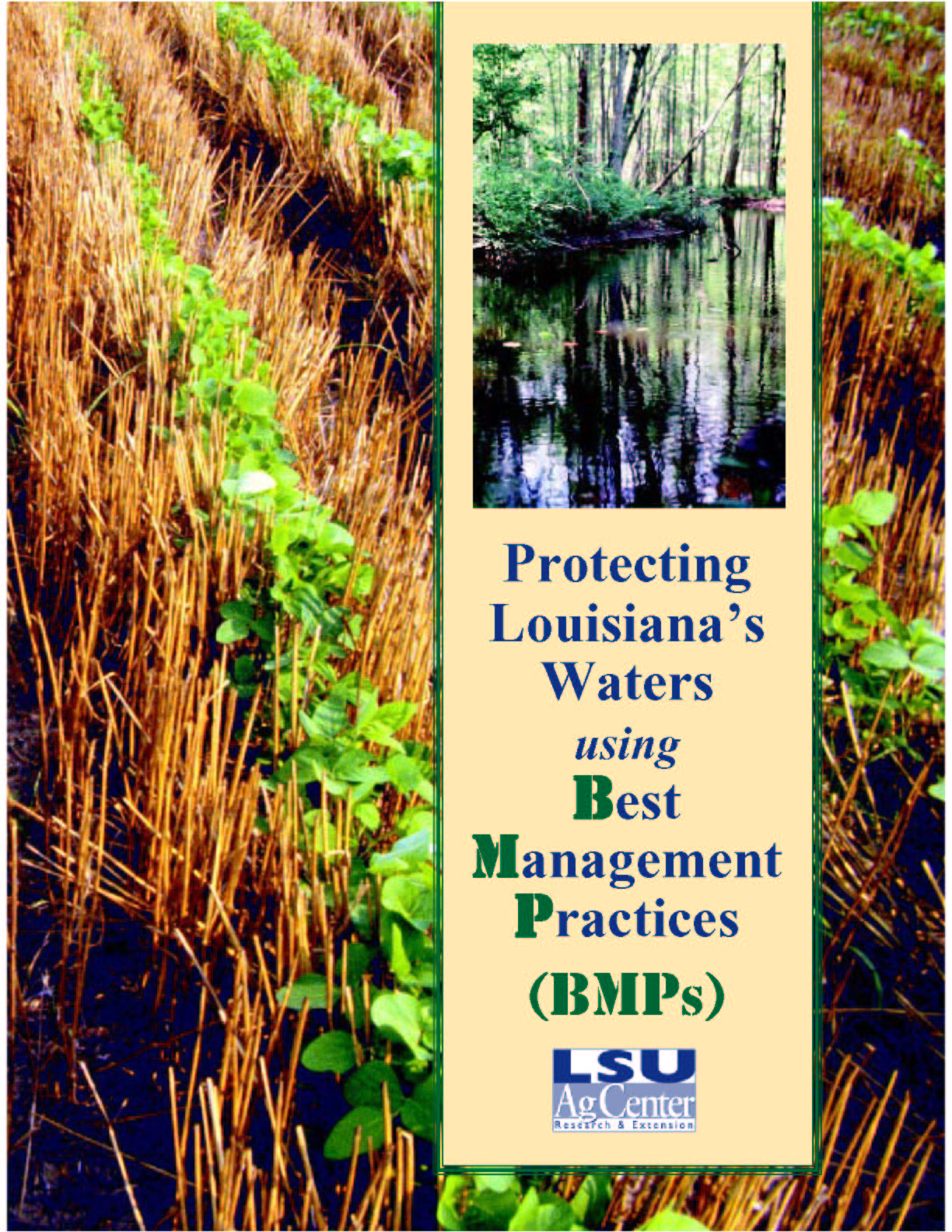 Protecting Louisianas Waters Using Best Management Practices