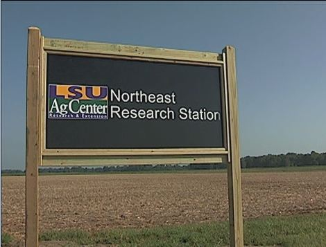 Northeast Research Station Video