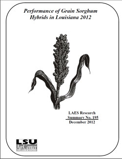 Performance of Grain Sorghum Hybrids in Louisiana 2012