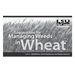 Suggestions for Managing Weeds in Wheat