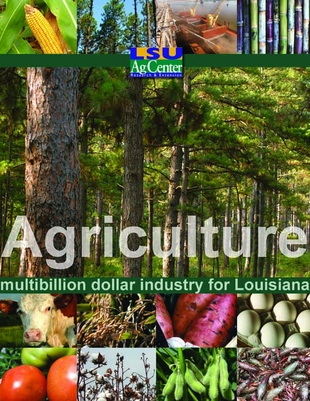 Agriculture:  Multibillion Dollar Industry for Louisiana