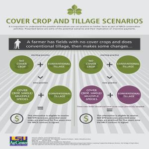 Cover Crop and Tillage Scenarios