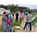 AgCenter to offer new food safety program for produce growers