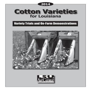 2014 Cotton Varieties for Louisiana