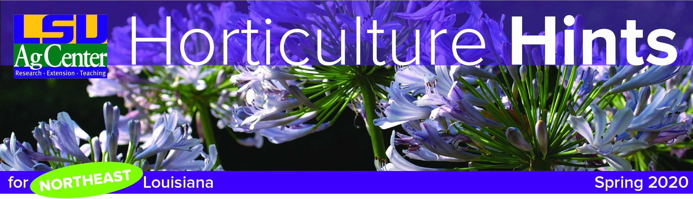 Horticulture Hints header for spring.