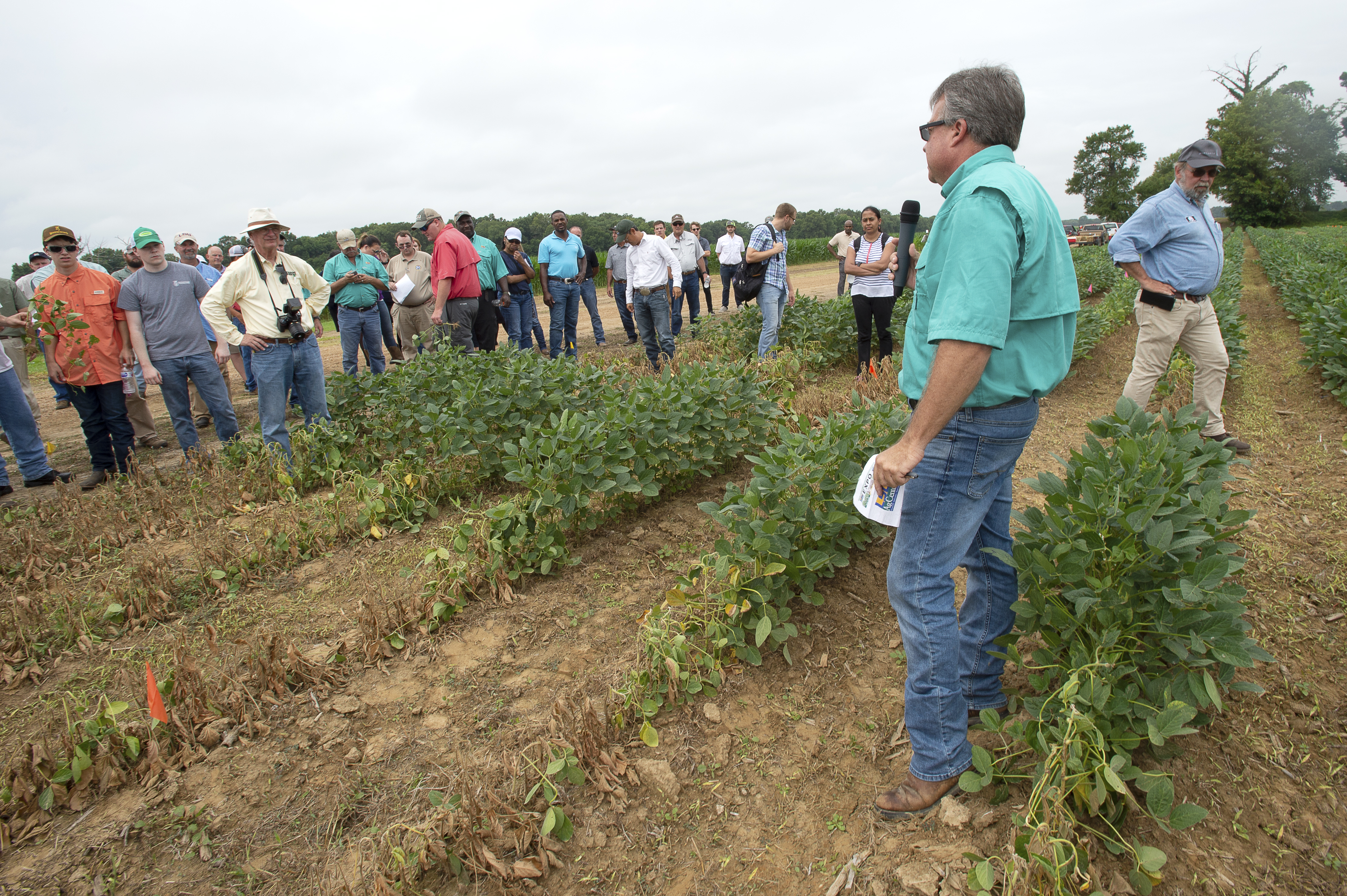 AgCenter field day expo offers new forum for agriculture information