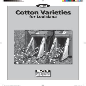 2013 Cotton Varieties for Louisiana